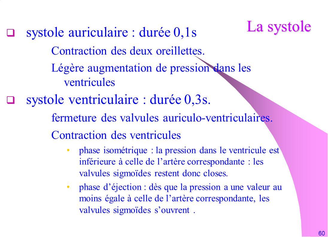 La systole systole auriculaire : durée 0,1s