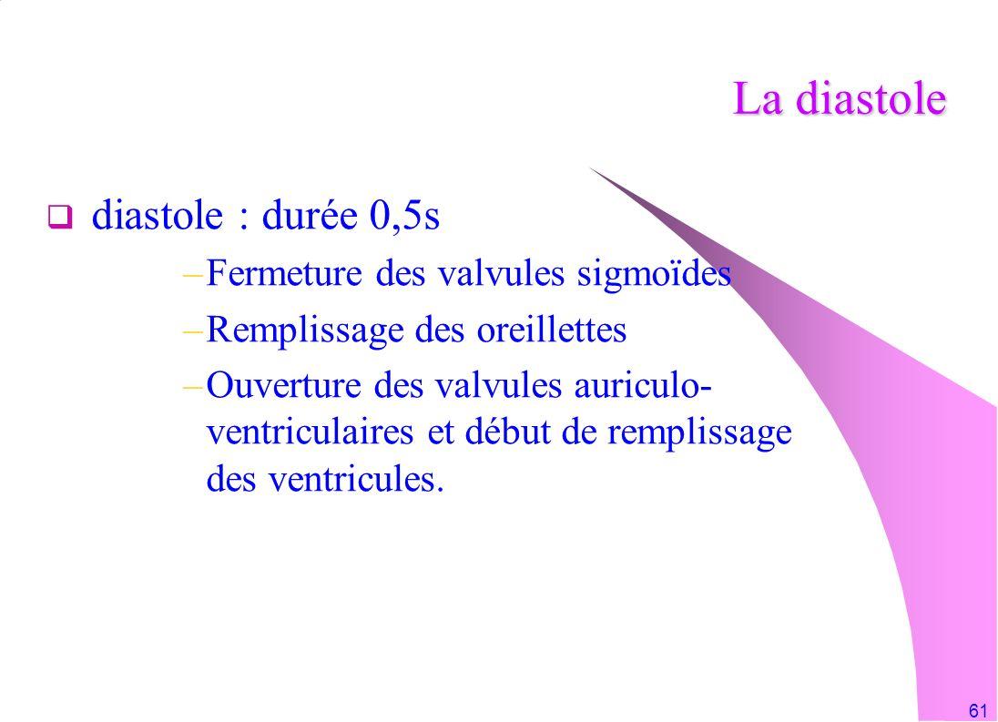 La diastole diastole : durée 0,5s Fermeture des valvules sigmoïdes