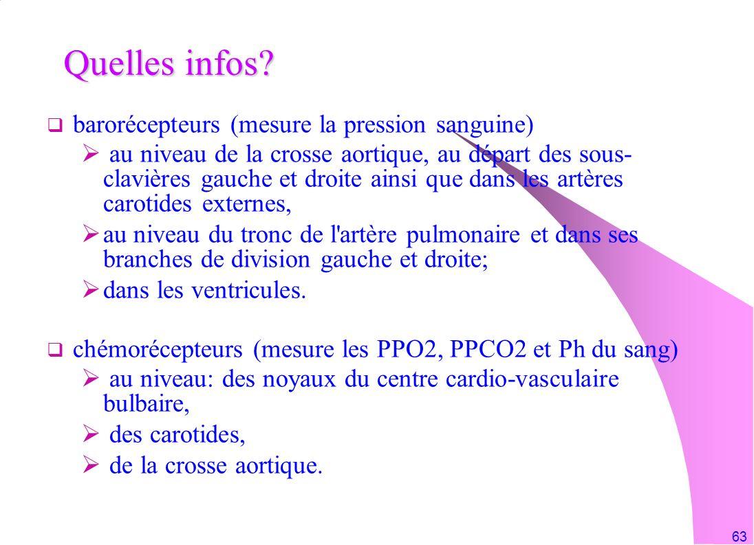 Quelles infos barorécepteurs (mesure la pression sanguine)