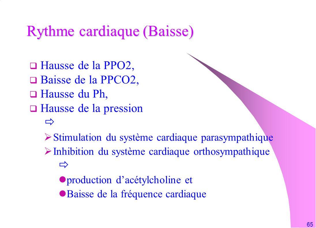 Rythme cardiaque (Baisse)