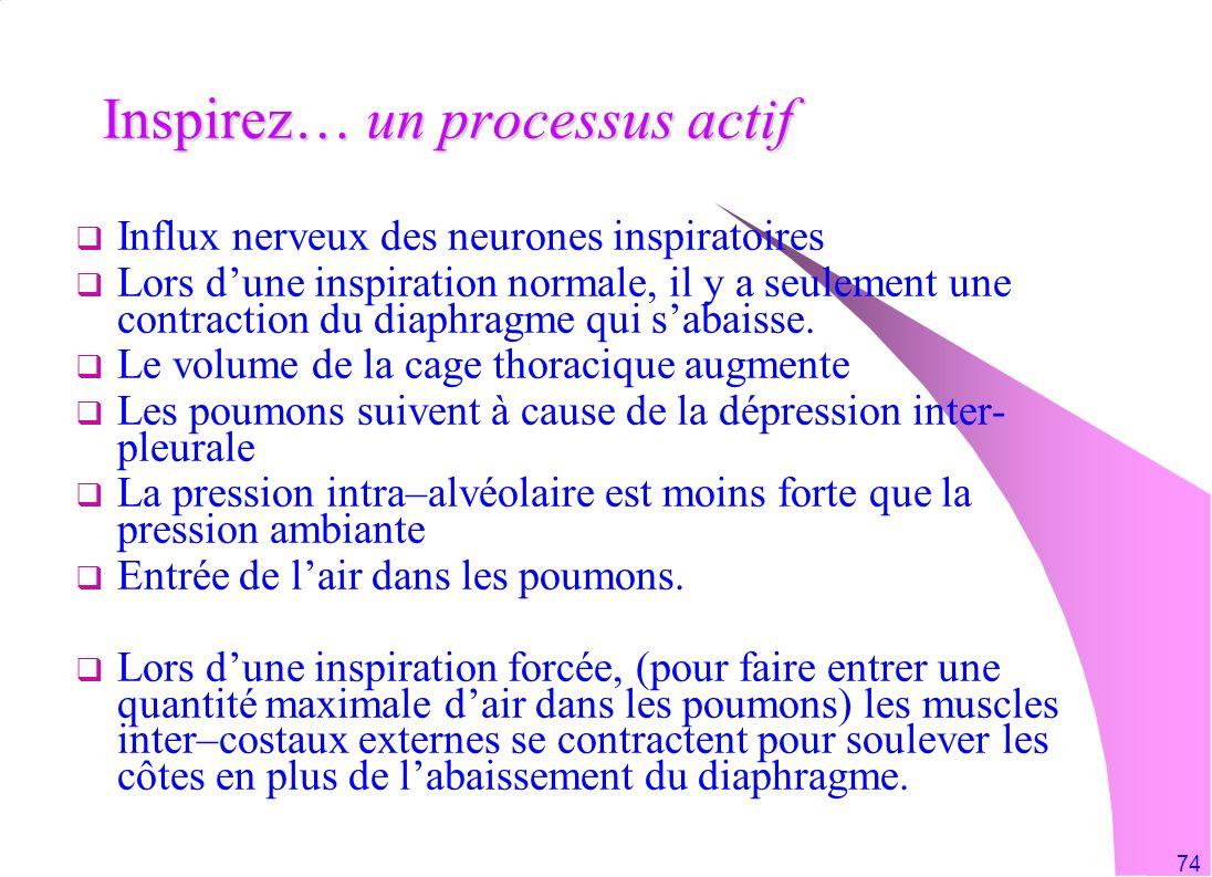 Inspirez… un processus actif