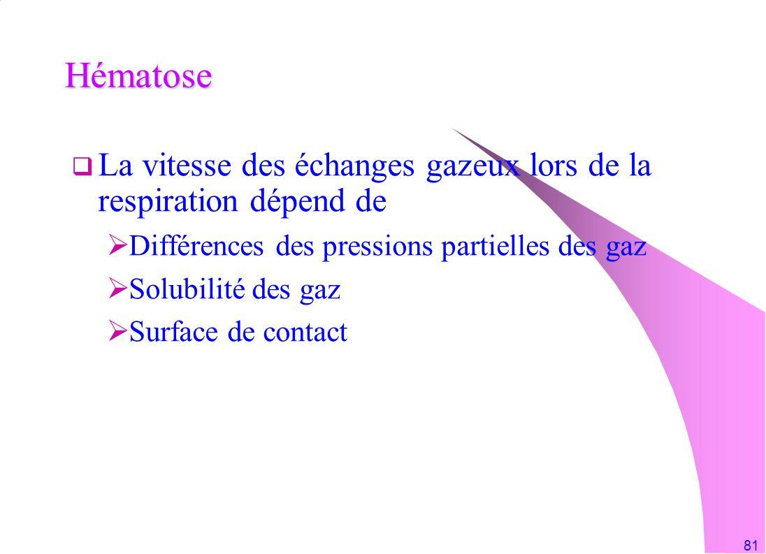 Hématose La vitesse des échanges gazeux lors de la respiration dépend de. Différences des pressions partielles des gaz.