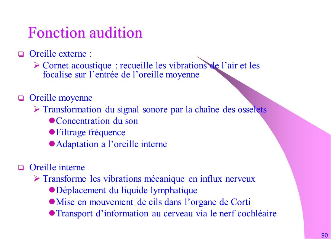 Fonction audition Oreille externe :