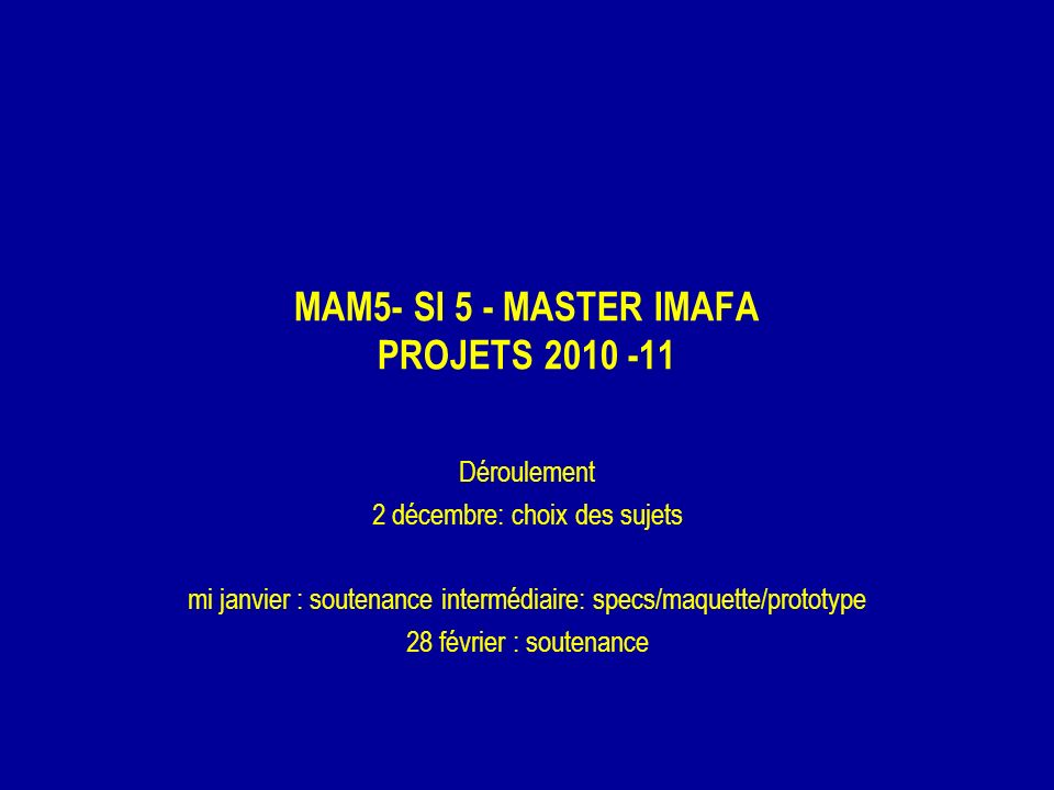 MAM5- SI 5 - MASTER IMAFA PROJETS 2010 -11