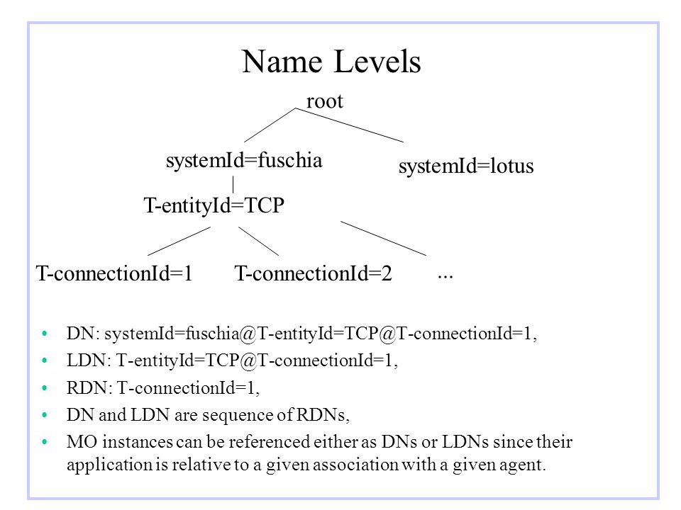 Name Levels root systemId=fuschia systemId=lotus T-entityId=TCP
