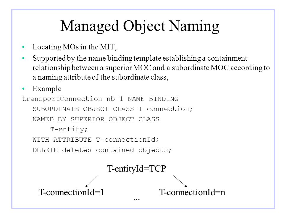 Managed Object Naming T-entityId=TCP T-connectionId=1 T-connectionId=n