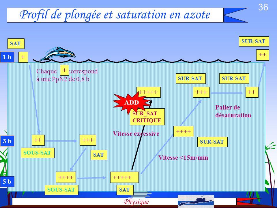 Profil de plongée et saturation en azote