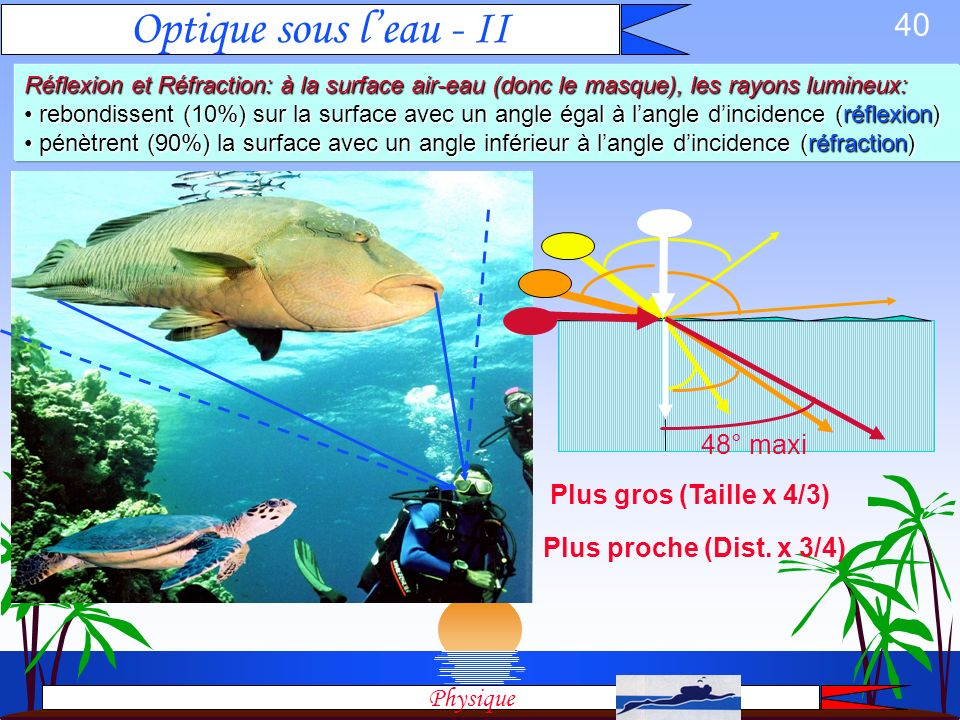 Optique sous l'eau - II 48° maxi Plus gros (Taille x 4/3)
