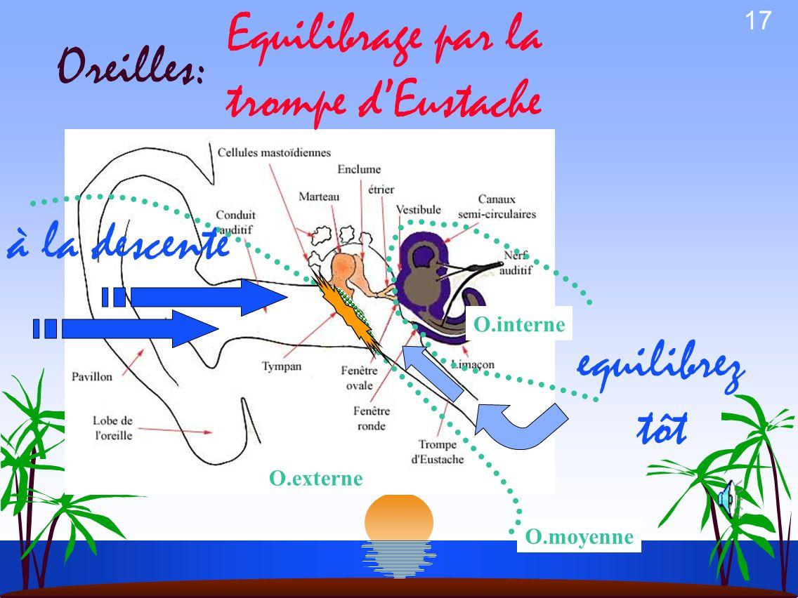 Equilibrage par la trompe d'Eustache