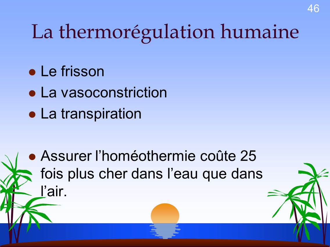 La thermorégulation humaine