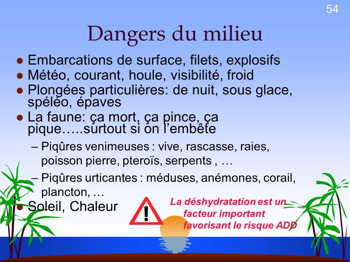 Dangers du milieu Embarcations de surface, filets, explosifs
