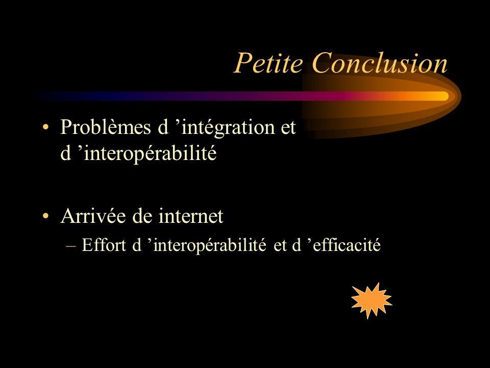 Petite Conclusion Problèmes d 'intégration et d 'interopérabilité