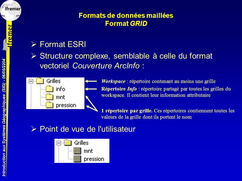 Formats de données maillées Format GRID