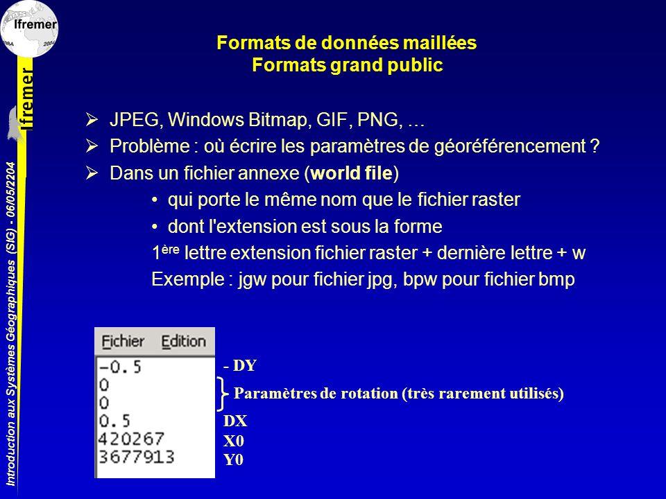 Formats de données maillées Formats grand public