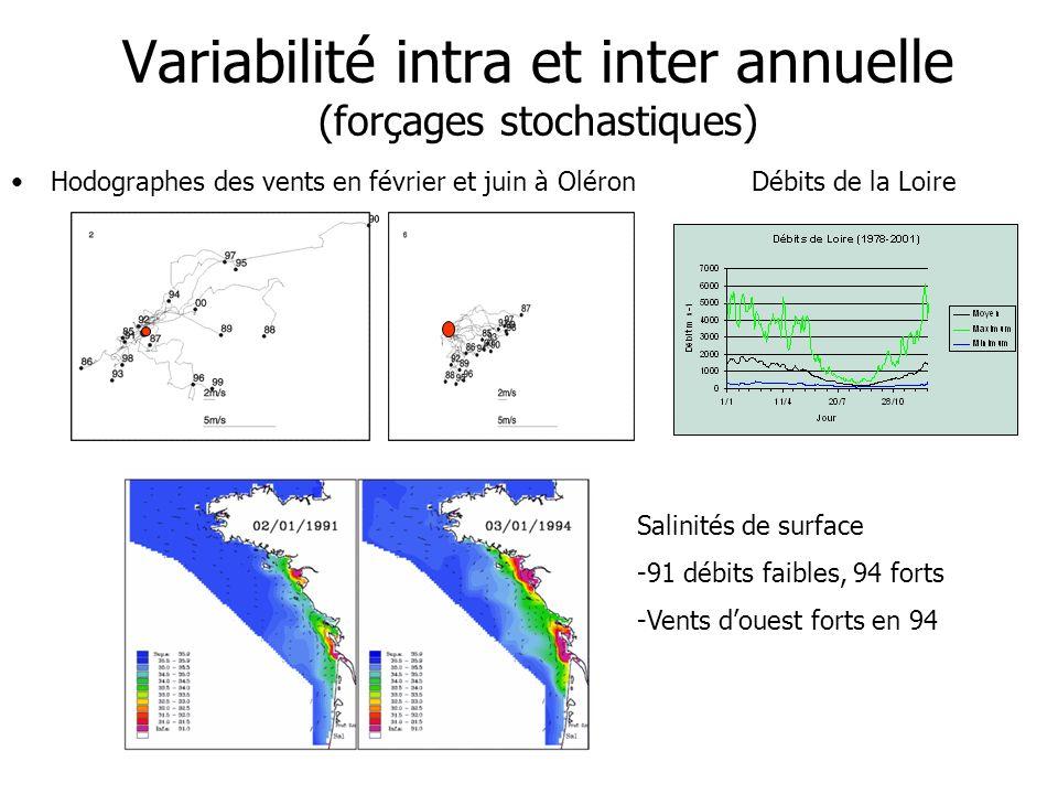 Variabilité intra et inter annuelle (forçages stochastiques)