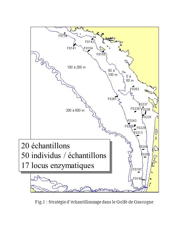 50 individus / échantillons 17 locus enzymatiques