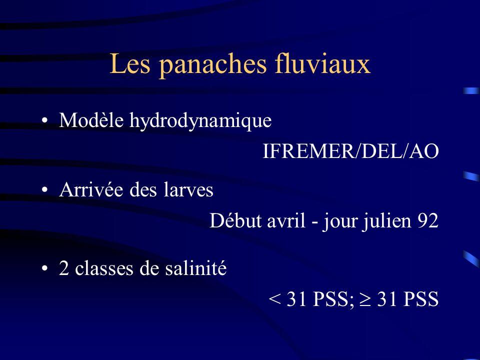 Les panaches fluviaux Modèle hydrodynamique IFREMER/DEL/AO