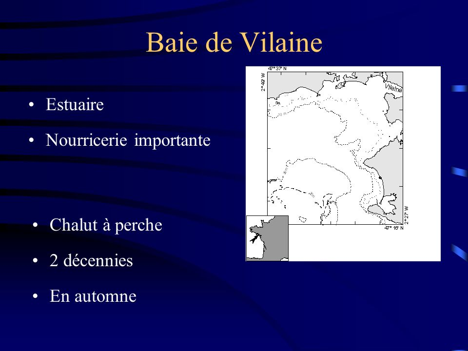 Baie de Vilaine Estuaire Nourricerie importante Chalut à perche