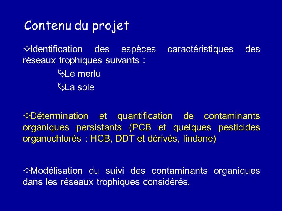Contenu du projet Identification des espèces caractéristiques des réseaux trophiques suivants : Le merlu.