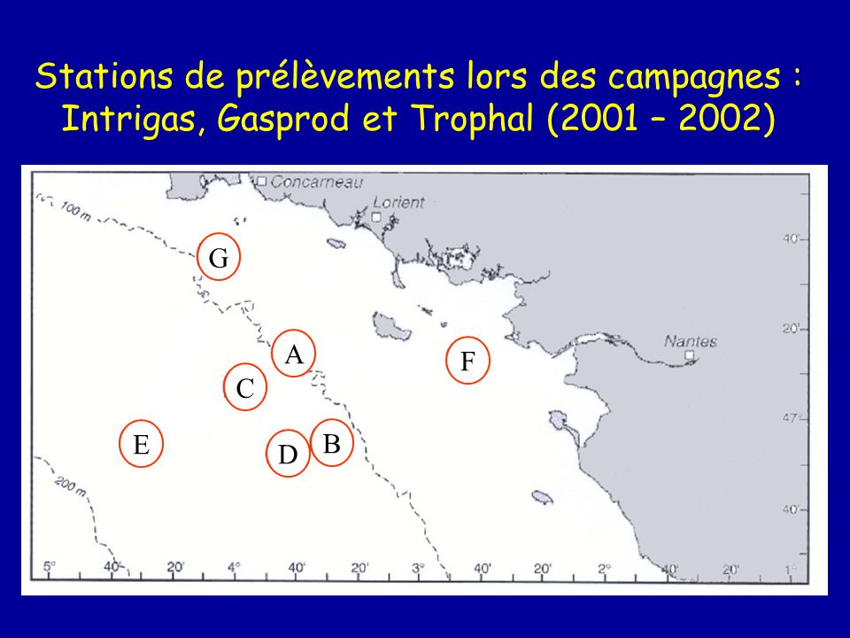 Stations de prélèvements lors des campagnes : Intrigas, Gasprod et Trophal (2001 – 2002)