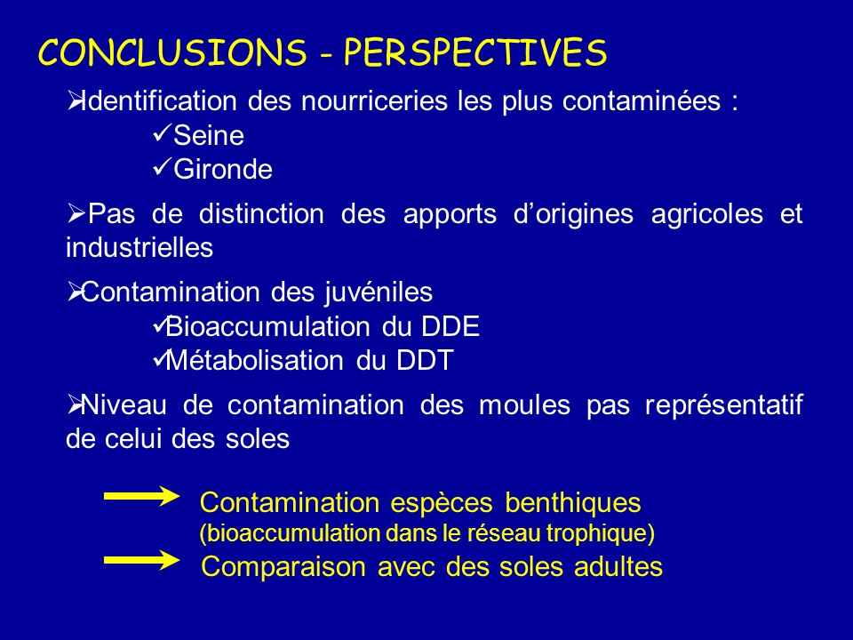 CONCLUSIONS - PERSPECTIVES