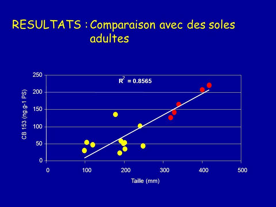 RESULTATS : Comparaison avec des soles adultes
