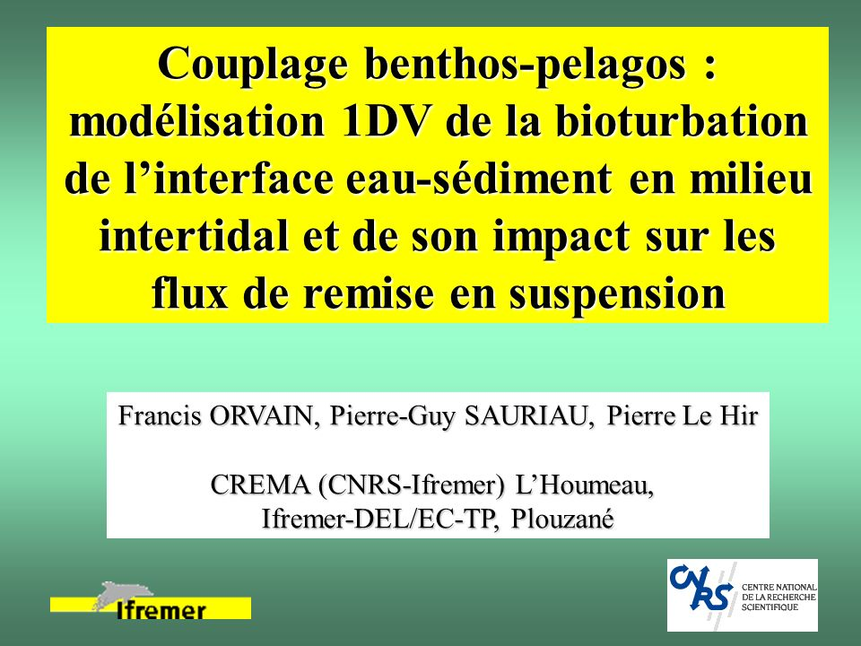 Couplage benthos-pelagos : modélisation 1DV de la bioturbation de l'interface eau-sédiment en milieu intertidal et de son impact sur les flux de remise en suspension