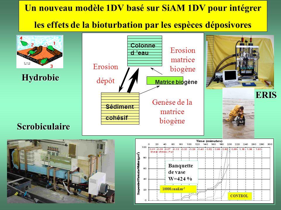 Un nouveau modèle 1DV basé sur SiAM 1DV pour intégrer