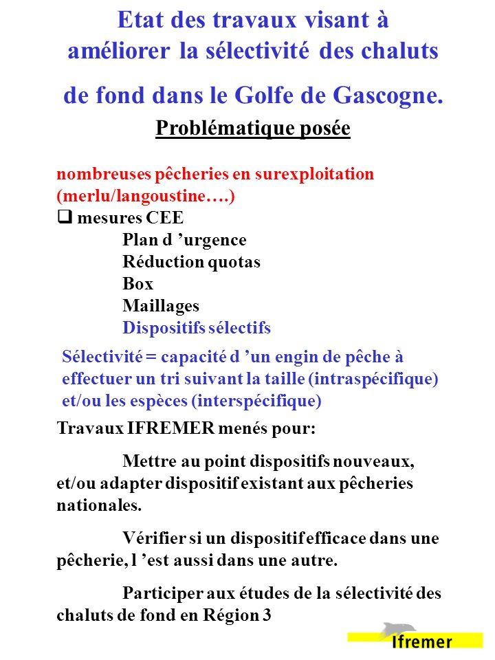 Etat des travaux visant à améliorer la sélectivité des chaluts de fond dans le Golfe de Gascogne.