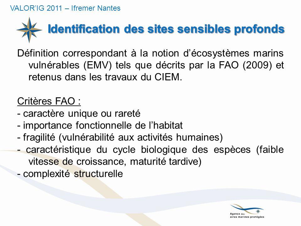 Identification des sites sensibles profonds