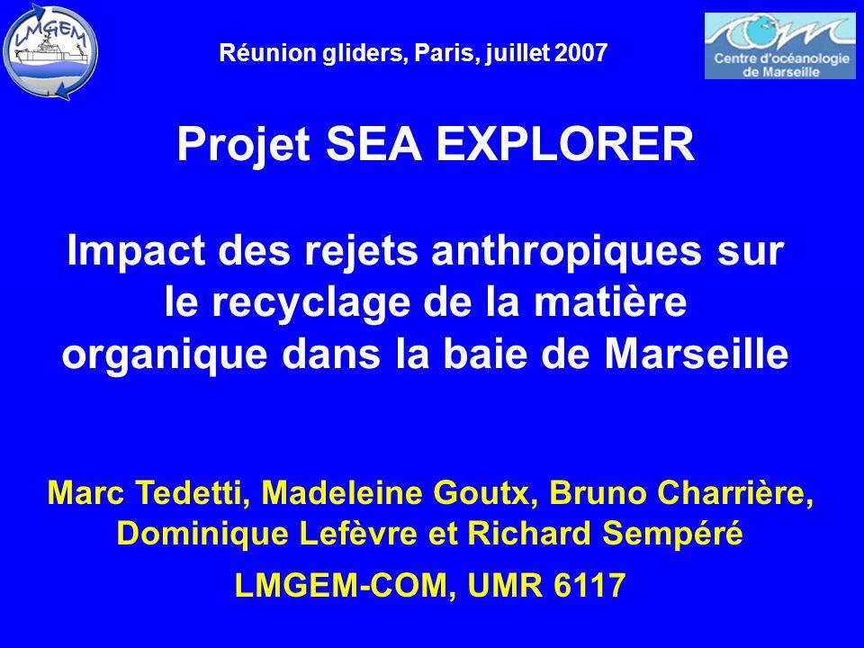 Réunion gliders, Paris, juillet 2007