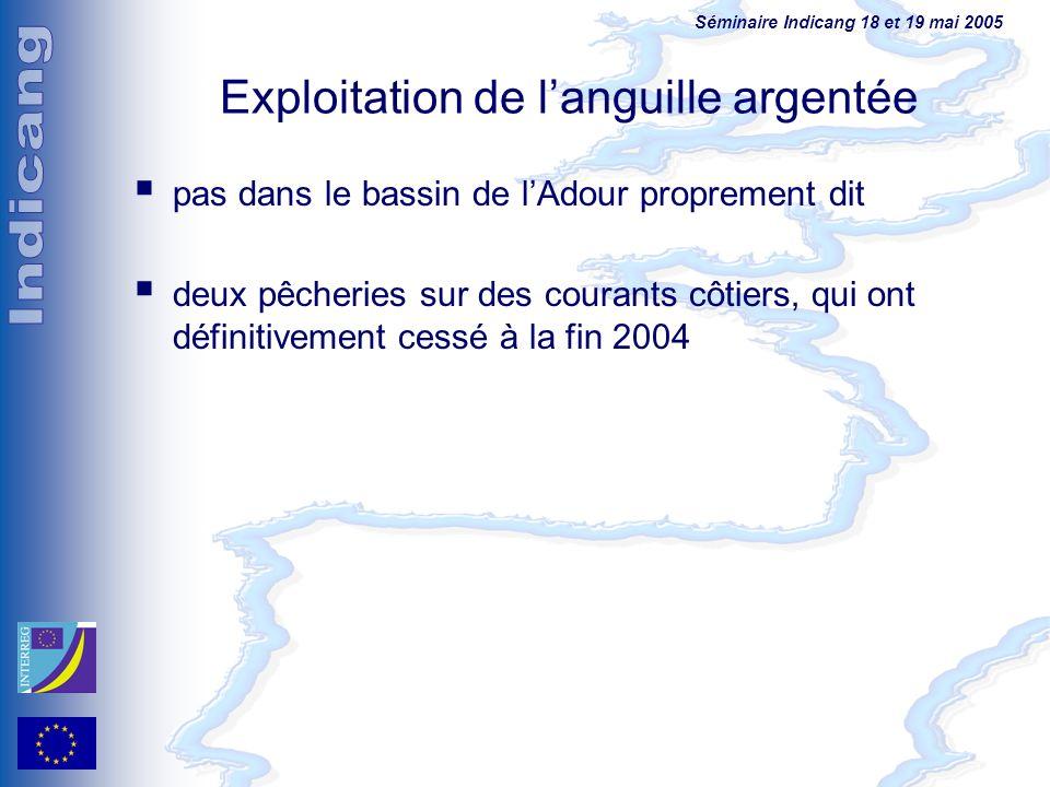 Exploitation de l'anguille argentée