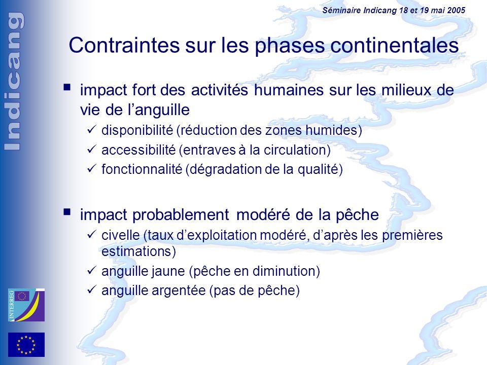 Contraintes sur les phases continentales