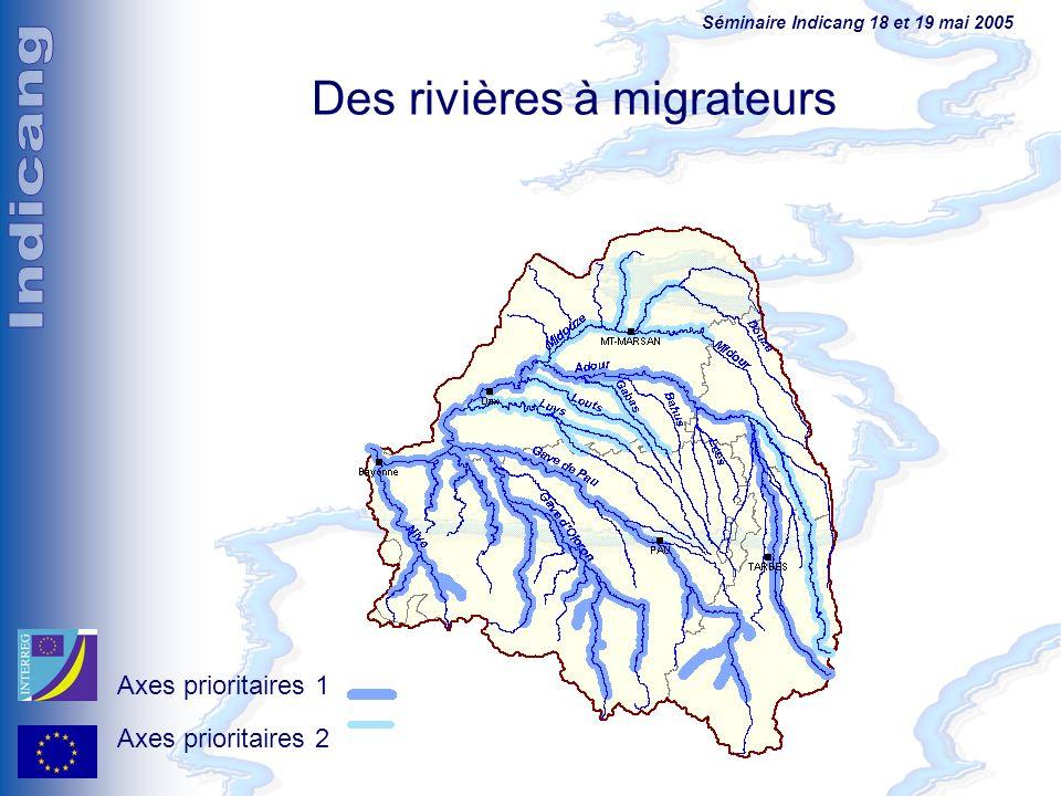 Des rivières à migrateurs