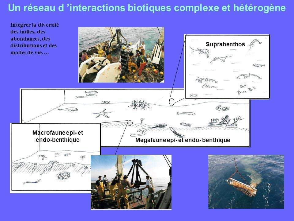 Un réseau d 'interactions biotiques complexe et hétérogène