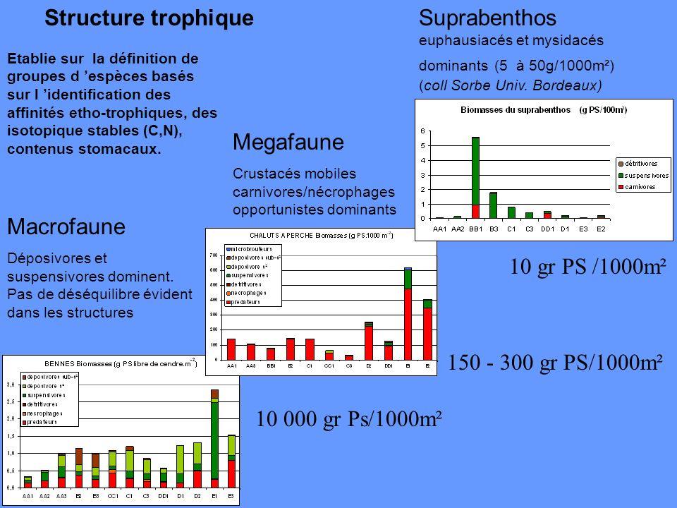 Structure trophique Suprabenthos euphausiacés et mysidacés dominants (5 à 50g/1000m²) (coll Sorbe Univ. Bordeaux)