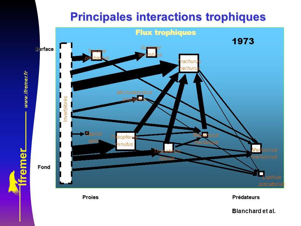Principales interactions trophiques