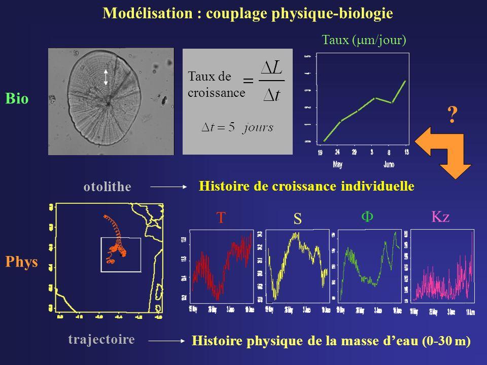 Modélisation : couplage physique-biologie Bio T S  Kz Phys otolithe