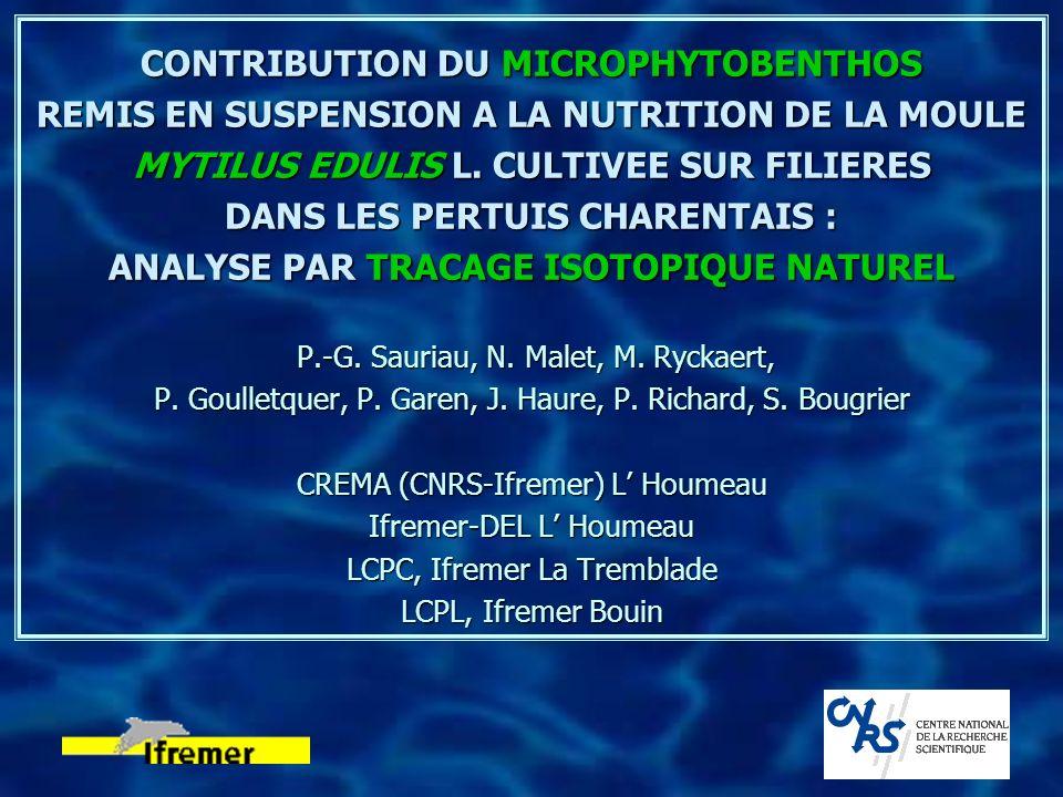 CONTRIBUTION DU MICROPHYTOBENTHOS REMIS EN SUSPENSION A LA NUTRITION DE LA MOULE MYTILUS EDULIS L.