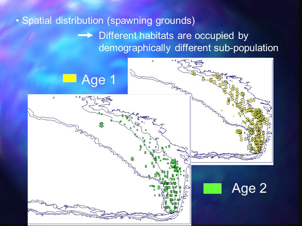 Age 1 Age 2 Spatial distribution (spawning grounds)