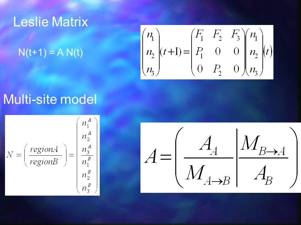 Leslie Matrix N(t+1) = A N(t) Multi-site model