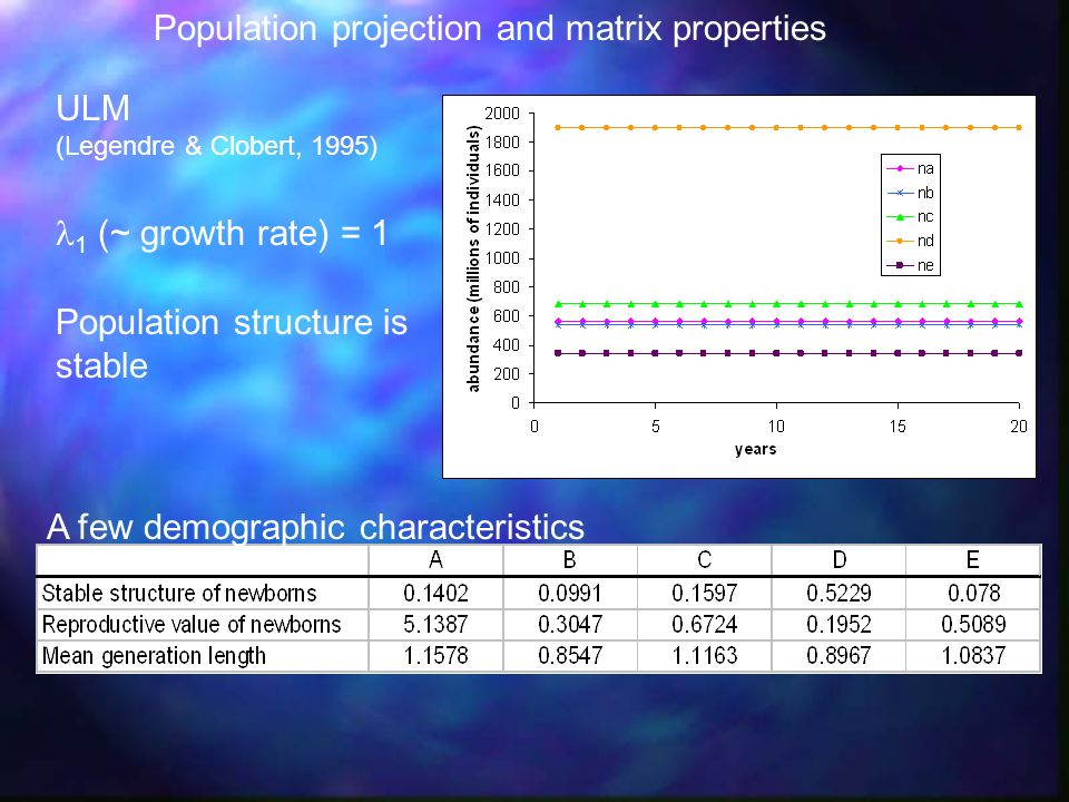 Population projection and matrix properties