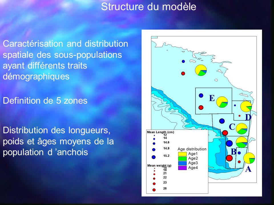 Structure du modèle A. E. D. C. B. Caractérisation and distribution spatiale des sous-populations ayant différents traits démographiques.