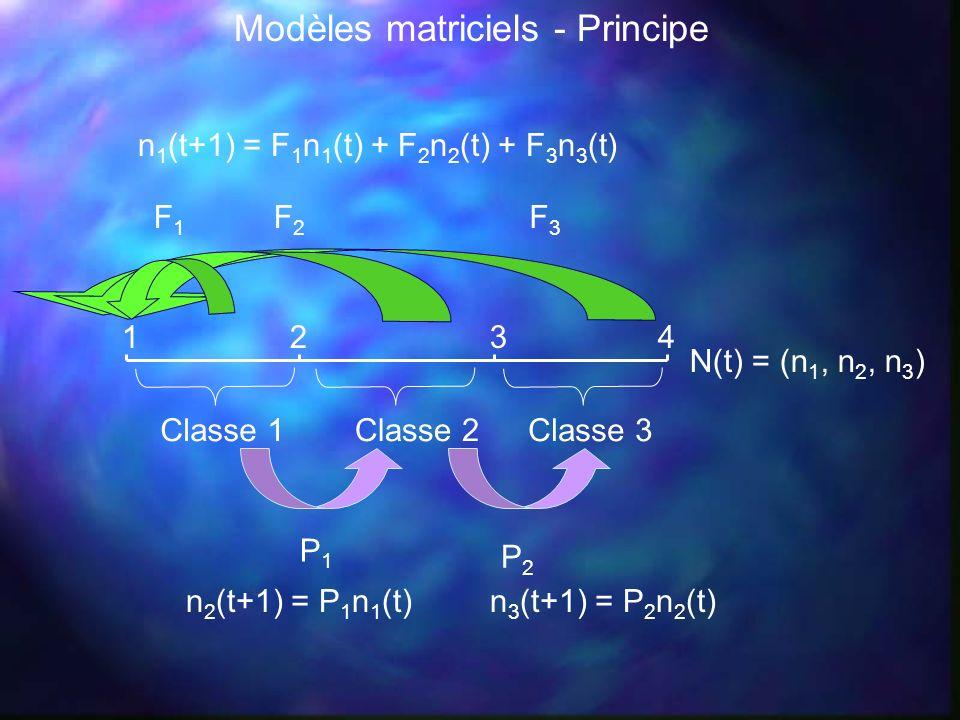 Modèles matriciels - Principe