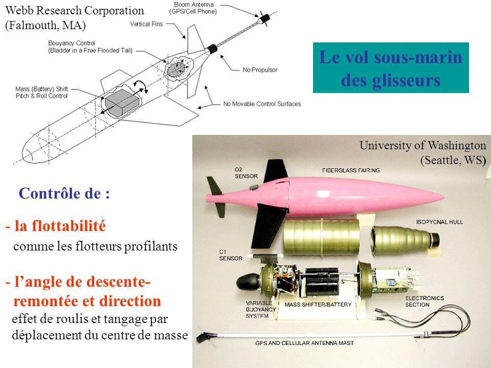Le vol sous-marin des glisseurs