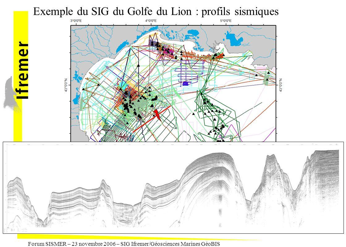 Exemple du SIG du Golfe du Lion : profils sismiques