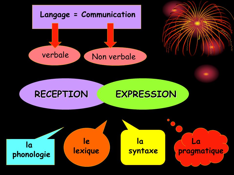 RECEPTION EXPRESSION Langage = Communication verbale Non verbale