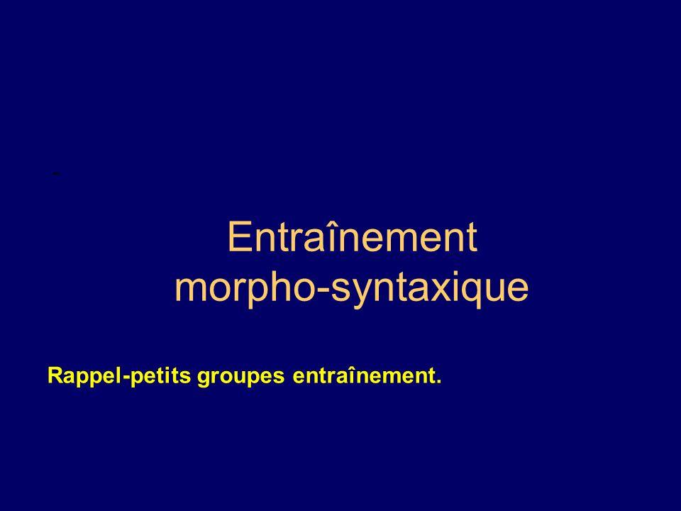 Entraînement morpho-syntaxique