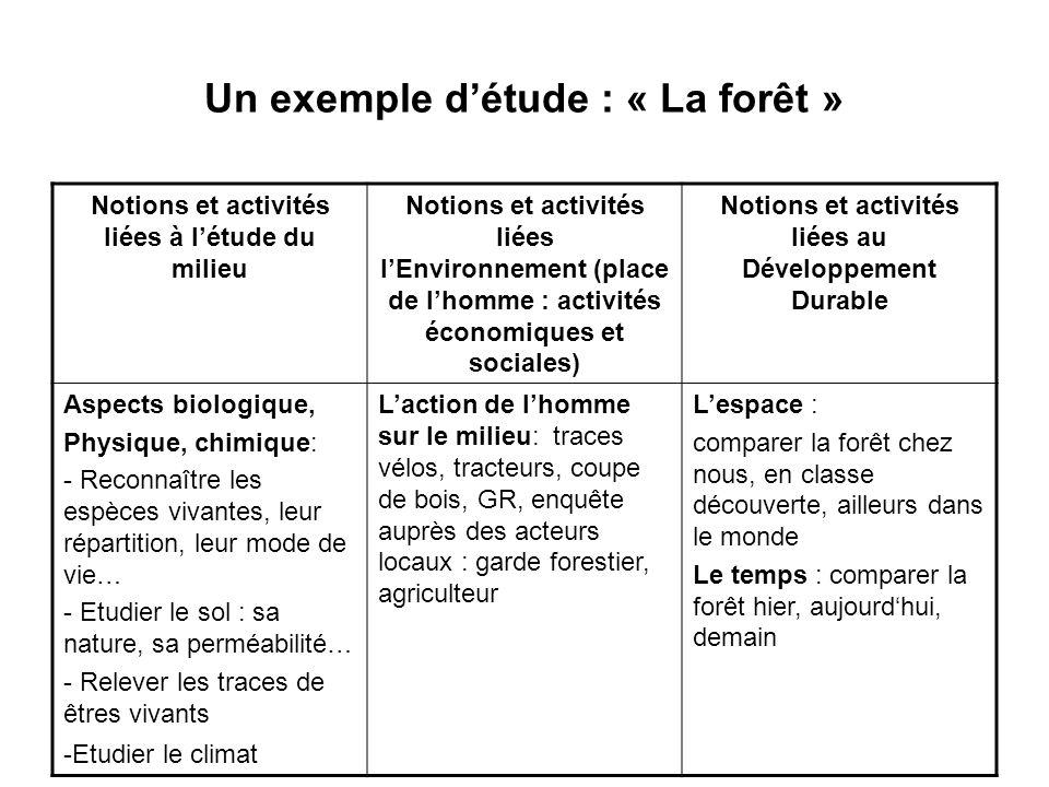 Un exemple d'étude : « La forêt »