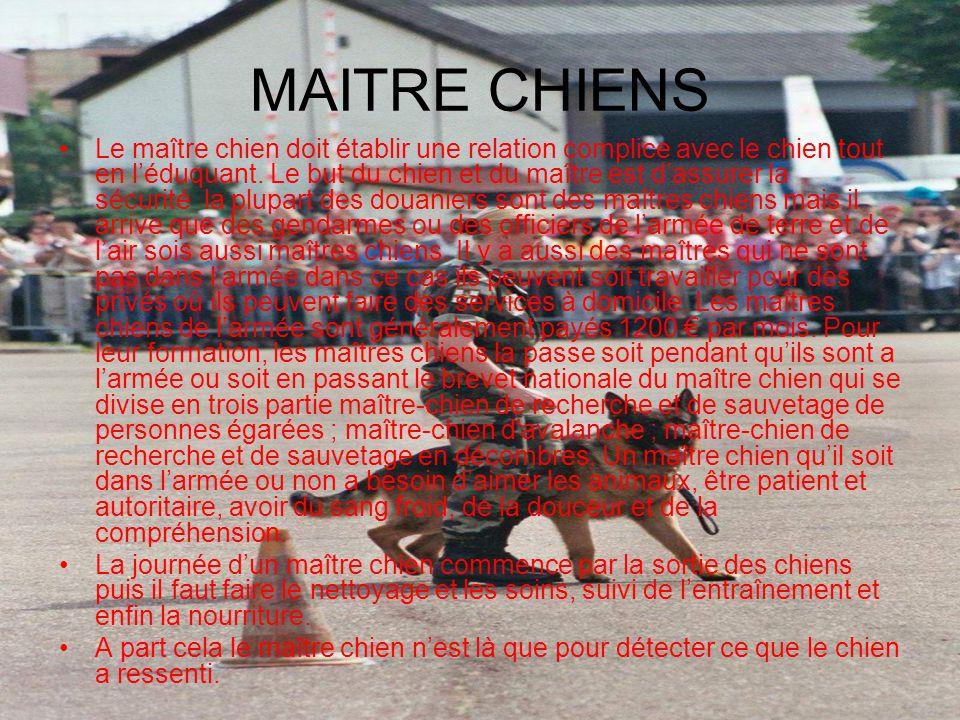 MAITRE CHIENS
